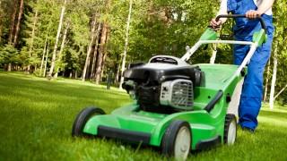 Gräsklippet och kompostering