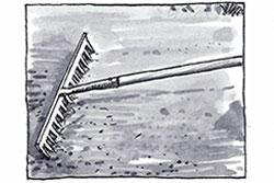 illustration-7