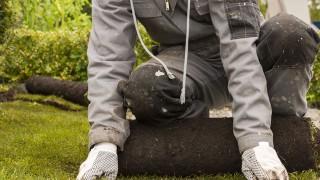 Jordförbättring för gräsmattan