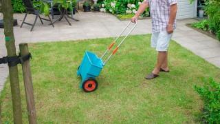 Kalkning av gräsmatta