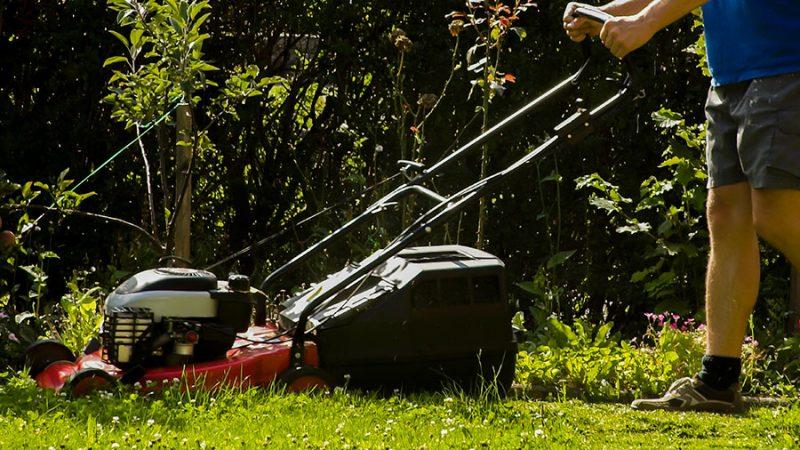 Klippning av gräsmattan