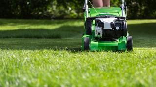 Renovering av gräsmatta i sju snabba steg