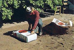 Sprid ut jordförbättringsmedel som torvmull och grov sand i ett jämntjockt lager samtidigt med grundgödseln.