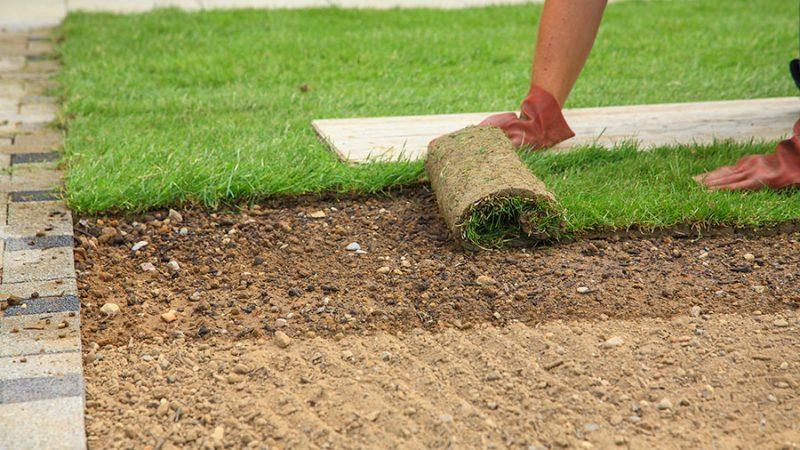 Lägga färdig gräsmatta – Tips inför läggningen
