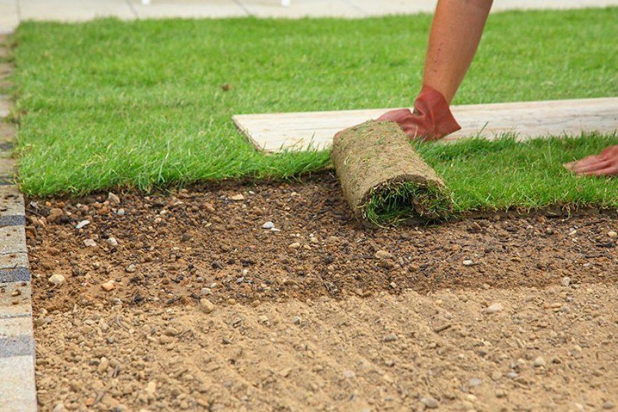 Kontakt gräsmatta