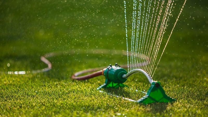 Vattning av gräsmattan