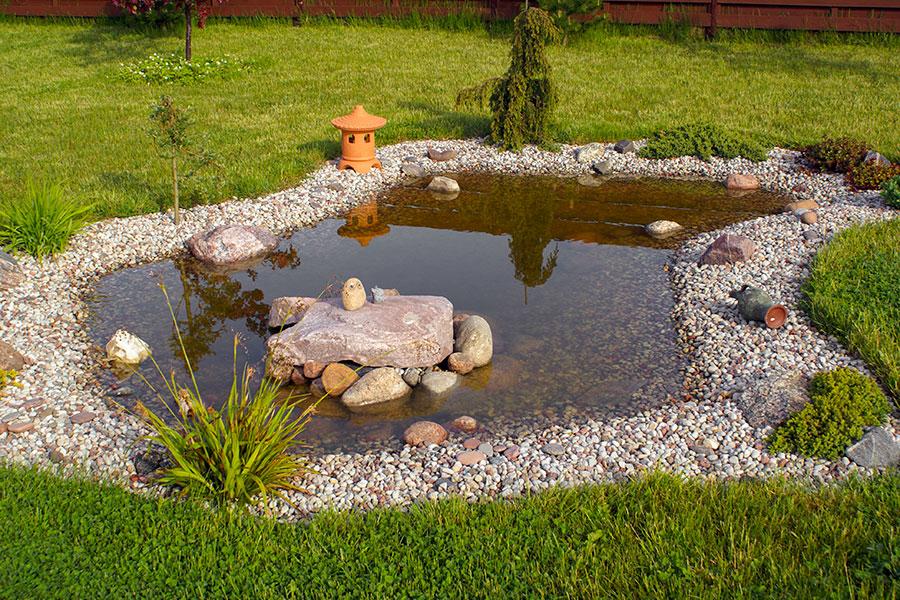 Damm i trädgård