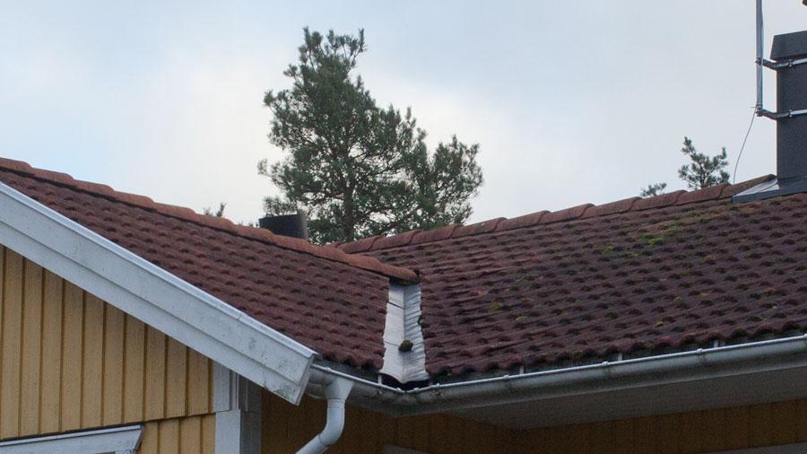 Ränndal på tak