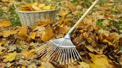 Trädgårdsredskap – Räfsa, lövblås och lövkorgar
