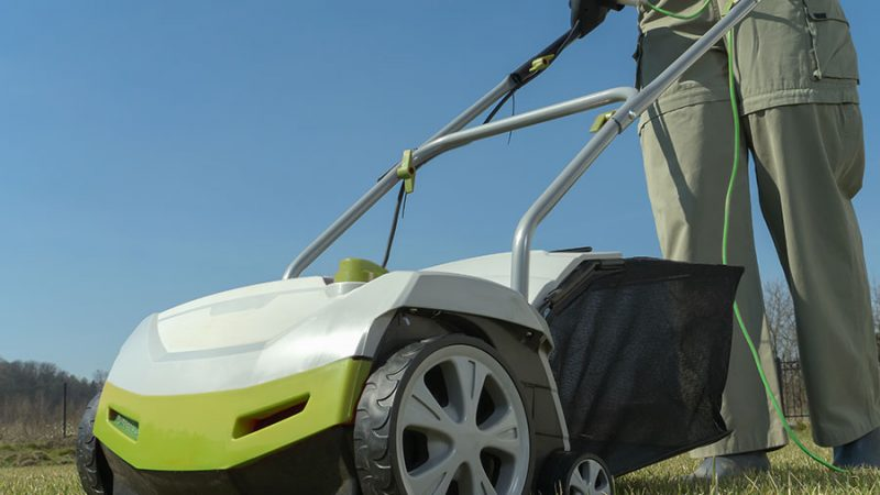 Vertikalskärare hjälper mot mossa i gräsmattan