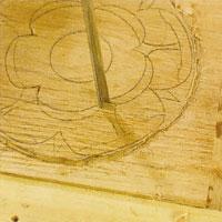 markera skiljelinjen mellan kronbladen