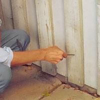 Känn efter att träet inte är murket med ett spetsigt föremål, t ex en syl.
