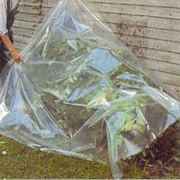 Täck fönster, stengrund och angränsande växter med skyddsplast