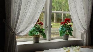 Fönsterbänkar med blommor i flera våningar