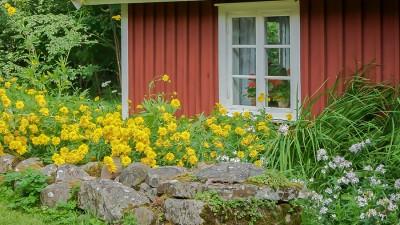 Fönsterrenovering –  Lär dig renovera och måla om gamla fönster