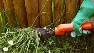 Gräs på fel plats