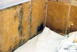 Diffusionsspärr badrum