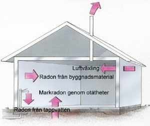 Radon från olika delar i huset