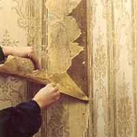 Mögelsvampar och alger kommer lättare tillbaka om man inte tar bort tapeter på väggarna