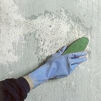 Använd en lösning av en del klorin och två delar vatten. Tvätta noga tak och väggar