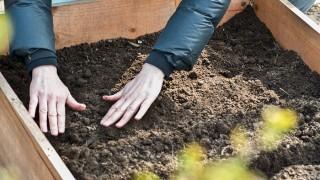 Bygg en drivbänk i trädgården