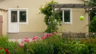 Bygg en pergola i trädgården