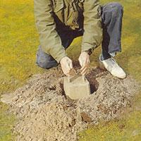 Packa till lös jord i hålet