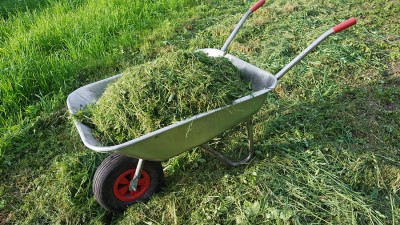 Redskap för gräsmattan