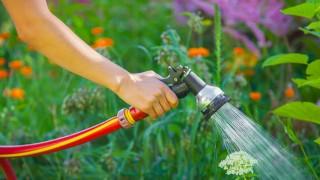 Trädgårdsbevattning – Bevattning i stort och smått
