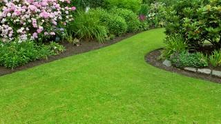 Trädgårdsplanering – Planera rätt för trädgården