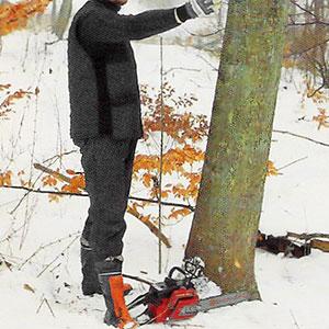 Bestämmer fallriktningen på trädet.