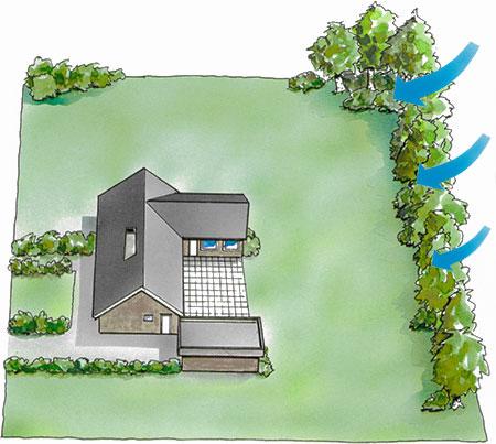 Illustration som visar hur träd kan skydda mot vind mot en villatomt